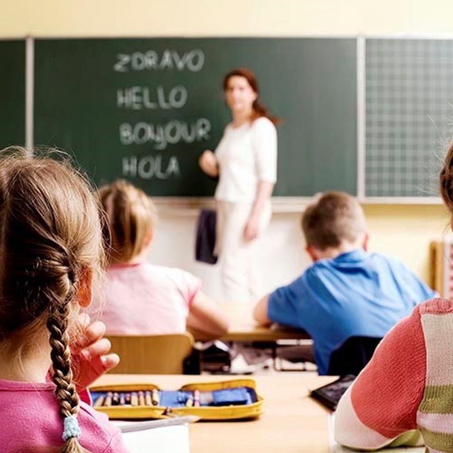 """Vebinar: """"Kako se prijaviti za Evropsku jezičku oznaku i Bazu jezičkih praksi"""""""